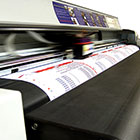 Red Deer Large Format Printing Services
